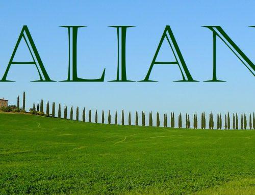 ICM in der Philologie – Mit italienischer Grammatik auf Rundreise