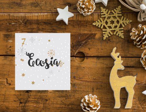 Tür 7 – Ecosia